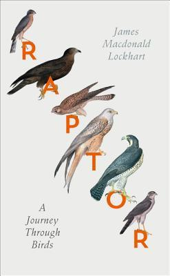 Raptor_James Macdonald Lockhart